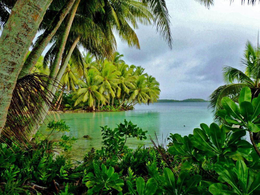 atolul-palmyra-01