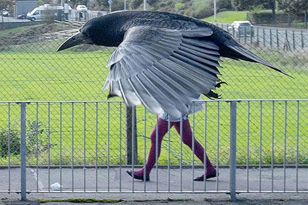 birdman-inceputul