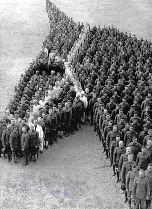 cavaleristi-cap-de-cal-sua-1917