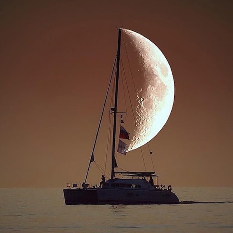 corabia=panze