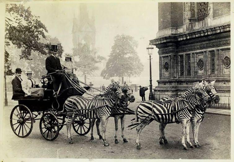 echipaj-londonez-exotic-1894