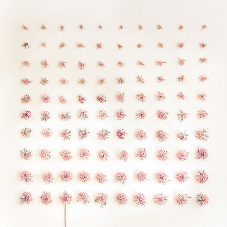 emily-blincoe-obiecte-aranjate-frumos-27