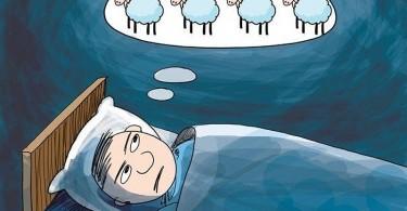 insomnie-numararea-oilor