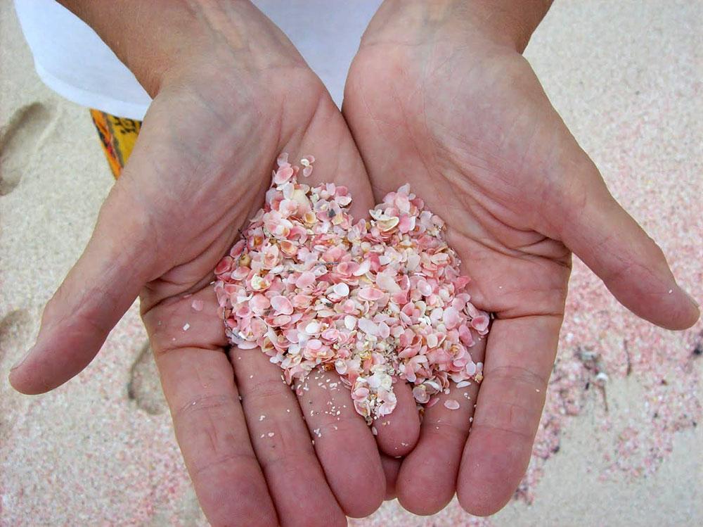 pink-beach-bahamas-02