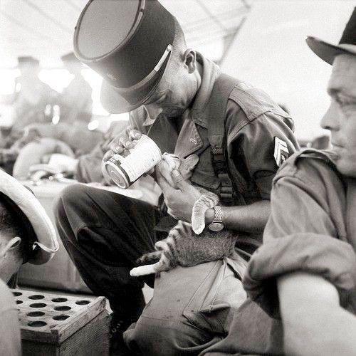 soldat-francez-pisica-indochina-1956