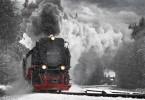 vine-iarna