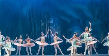 85958ec8d5dff689_640_ballet